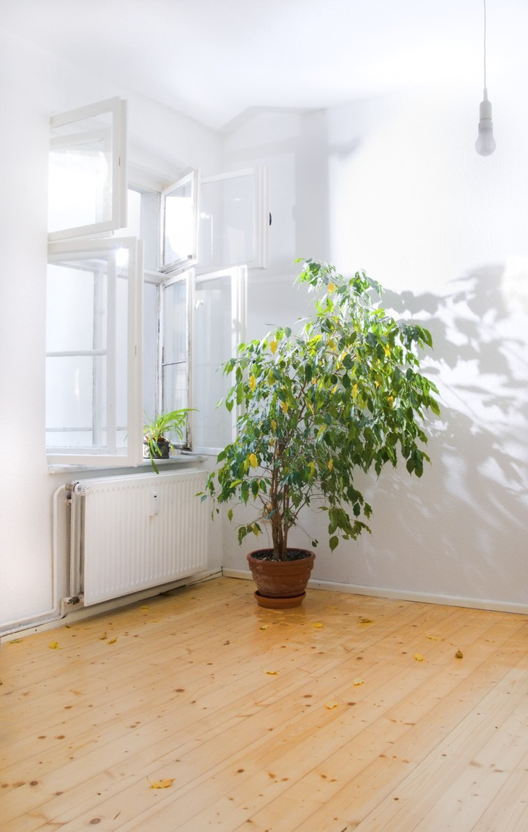 content_indoor_air_quality_blog.jpg